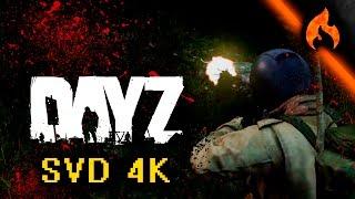 SVD 4K GAMEPLAY (DayZ)