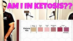 Ketone Test Strips | Results | Ketosis Diet | Keto | Ketosis Test | Ketostix | Vlog #2