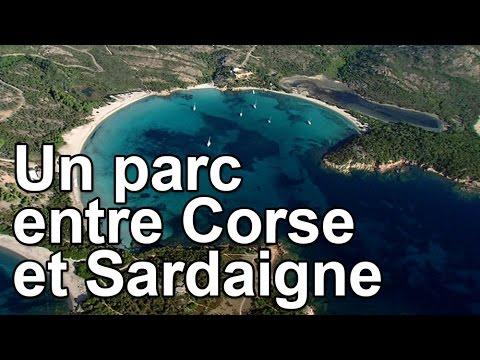 Pierre Perret - Les jolies colonies de vacancesde YouTube · Durée:  3 minutes 53 secondes