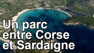 Un parc entre Corse et Sardaigne