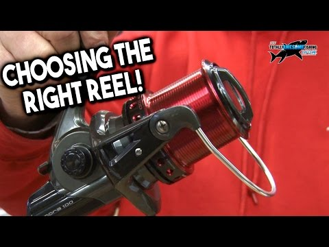 Choosing The Best Fixed Spool Spinning Reel For Beach Fishing | TAFishing
