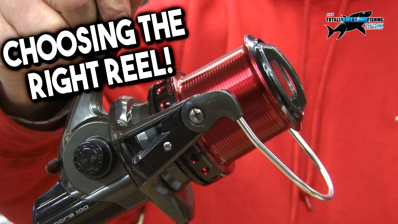 Choosing the Best Fixed Spool Spinning Reel for Beach ...