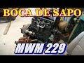 CHEVROLET BOCA DE SAPO MOTOR MWM 229