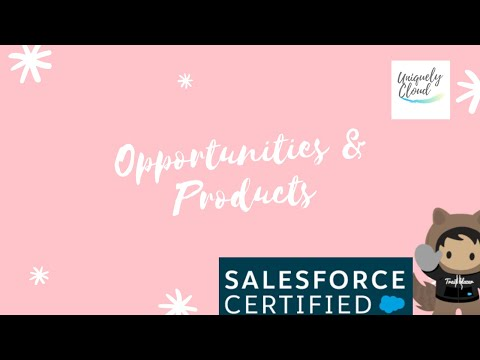 Part 5 Salesforce Opportunities & Products