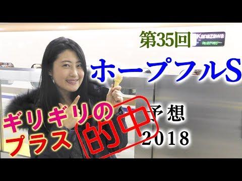 3連単プラス的中!【競馬】ホープフルS 2018 予想(衝撃の調教か?衝撃の相性か?) ヨーコヨソー