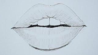 lips draw beginners pencil using