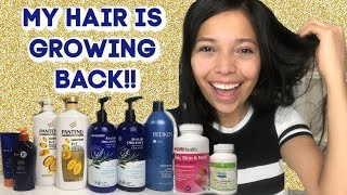 HOW TO GROW YOUR HAIR BACK!!! WHAT I DID! HAIR GROWTH TIPS!