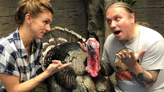 DID I REALLY GET A PET TURKEY FOR THE REPTILE ZOO?? | BRIAN BARCZYK
