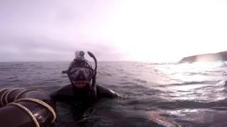 """Paua Dive   Bluff, New Zealand   """"The Windmill"""""""