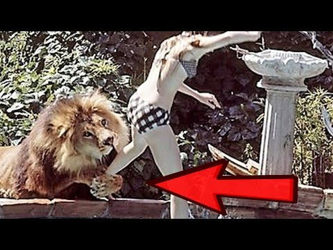 Most Shocking Stunts Gone Wrong
