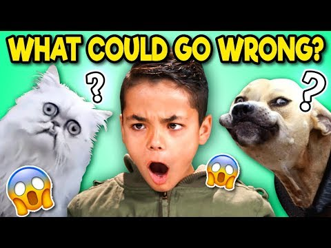 Try To Guess What Could Go Wrong Challenge? | Kids React