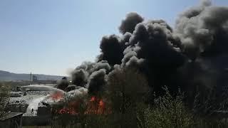 Großbrand auf Firmengelände am Trierer Hafen