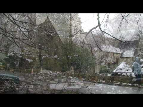 EPPING FOREST and HIGH BEACH.  Video Postcard 45.
