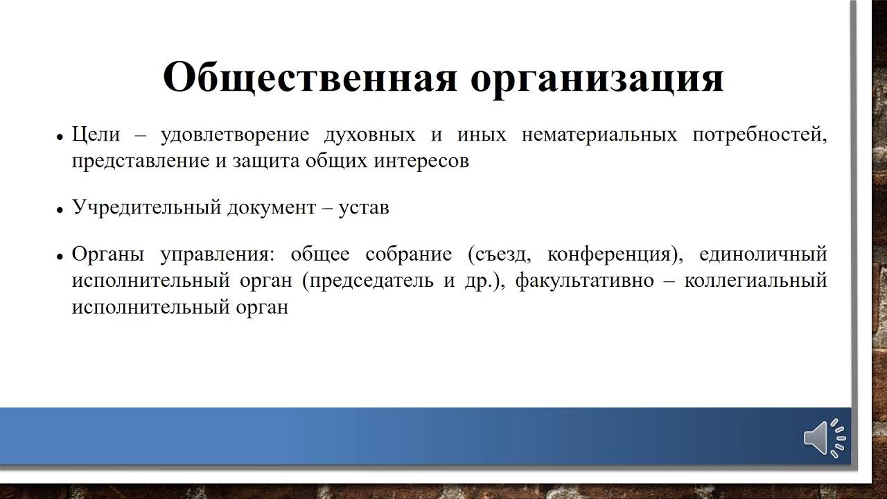 устав некоммерческой общественной организации 2020