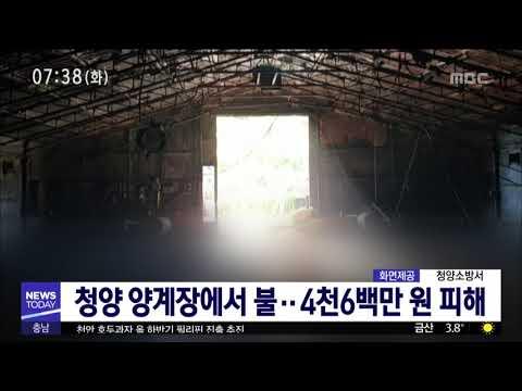 [대전MBC뉴스]사건사고