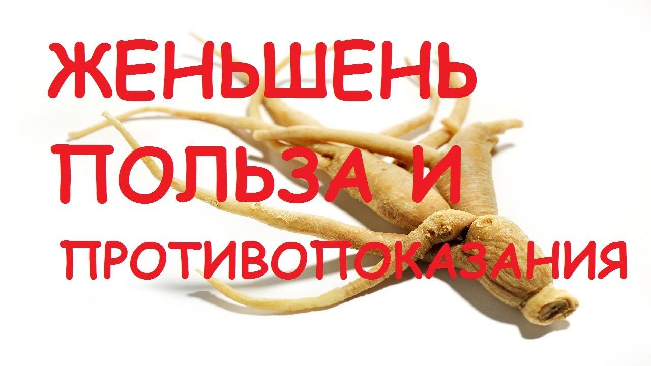 Корень женьшеня — полезные свойства и противопоказания для мужчин и женщин, видео