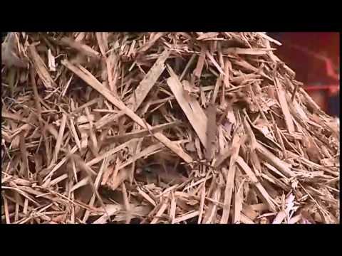 Spaleck Screening Materials(soil wood waste)