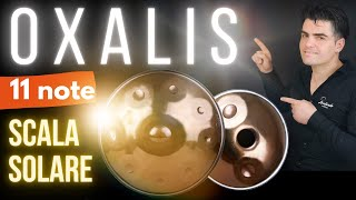 Handpan dall'atmosfera POSITIVA - Bass Oxalis 11 note inox