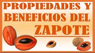 Beneficios y Propiedades del Zapote