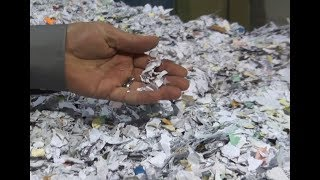 Off Site Document Shredding