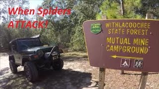 Central Florida Camping - Mutual Mine Campground