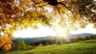 Rachmaninov PC 2 라흐마니노프 피아노 협주곡 2번