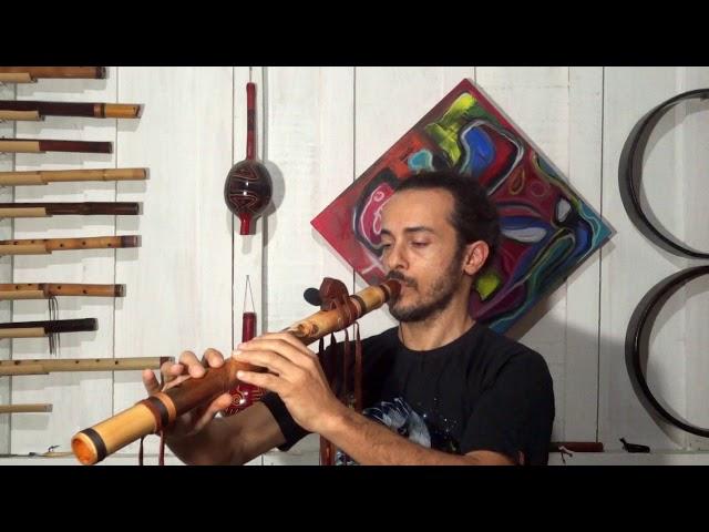 Flauta Nativa Urso E