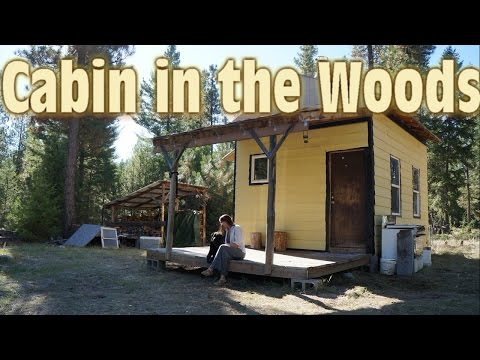 Our Tiny Cabin in the Woods - 12x16 Tiny House