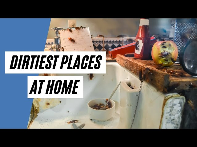 The 5 Dirtiest Places At Home  (Cleaning Tips)