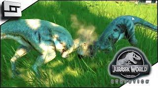 Jurassic World Evolution! The Dracorex are Fighting!? E11