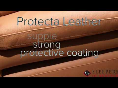 Natuzzi Editions Leather Sleeper Sofas At Sleepers In Seattle
