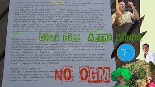 NO OGM! Botta e risposta Nencioni-Fidenato - Commenti di Franco Trinca