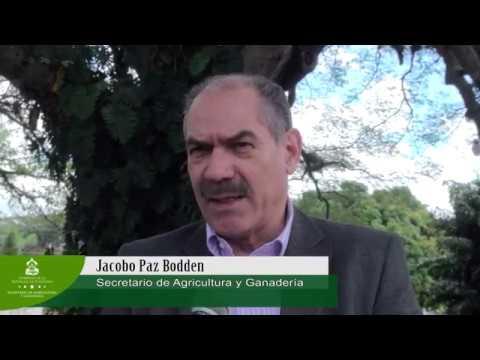 Taller Nacional de Códigos de Barra de ADN en Honduras