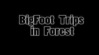 Bigfoot Sasquatch Trips