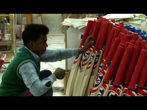 A cricket bat's journey (BBC Hindi)