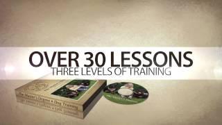The Master Degree Online Dog Training- Promo Video