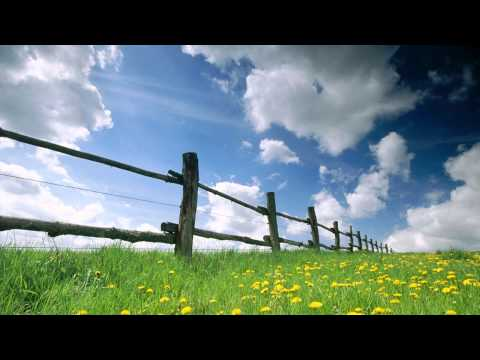Shulman - Transmissions in Bloom (HD)