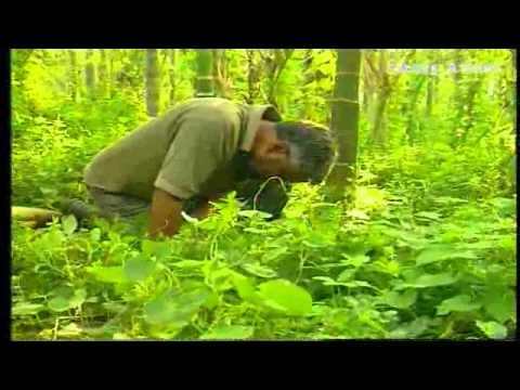 NATURAL FARMING - (ZERO FARMING) - KAILASH MURTHY