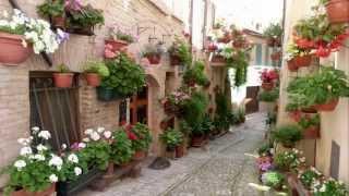 SPELLO Balconi, finestre e vicoli fioriti - Full HD