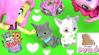 СУМОЧКА С КОТЯТАМИ! Котенок в Моём Кармане. Видео для Детей. Kitty in My Pocket Девушки Эквестрии