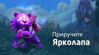 Новый питомец в World of Warcraft — Ярколап (RU)