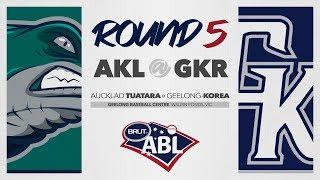 Auckland Tuatara @ Geelong-Korea, R5 | G3