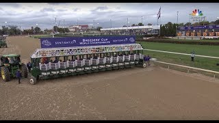 2018 Sentient Jet Breeders' Cup Juvenile - Game Winner