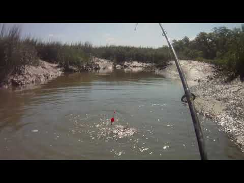 Redfish Smackdown GA Coast