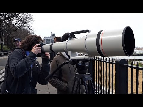 Quick Look | Canon Super Telephoto 1200mm f/5.6L