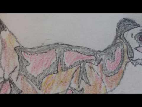 Utahraptor Ostrommaysorum VS Dakotaraptor Steini