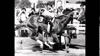 Secretariat in Pictures: A Tribute