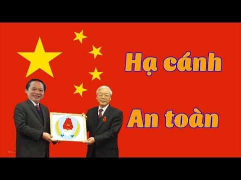 Trương Minh Tuấn đươc TBT Trọng kéo về làm phó ban tuyên giáo trung ương  Liệu đã hạ cánh an toàn