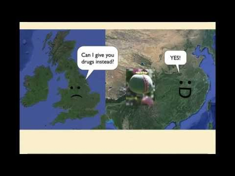 History of Tea in 6 Minutes