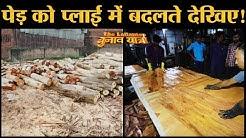 Making of Plywood देखिए Asia No 1 Ply Wood Industry Yamunanagar में | Haryana | Wood
